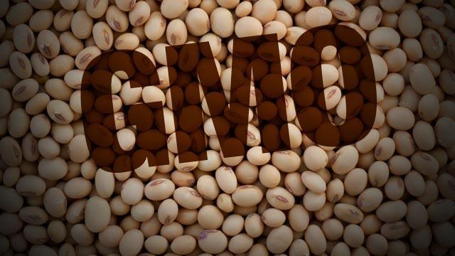 Sva današnja soja je genetski modificirana.