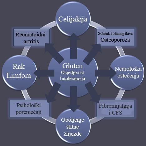 Osjetljivost na gluten  uključuje abdominalne bolove slične sindromu razdraženog želuca, zamor, glavobolju, migrene, shizofreniju te mnoge druge bolesti i stanja, Više o bolestima uzrokovanim glautenom pročitajte ovdje.