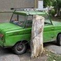 funny-humor-photo-car-chained-tree-stump
