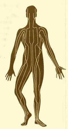 Energetski meridijani u tijelu.