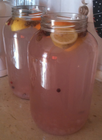 Probiotik Tibicos pripremljen sa kupinama, malinama, narančama, limunom i jagodama