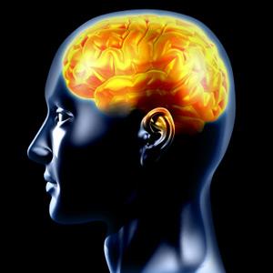 Svi ljudi bi trebali imati mozak, zar ne? Iako se u vicevima često spominju ljudi bez mozga, znanstvenici su otkrili ljude, koji žive i rade iako im je glava šuplja.