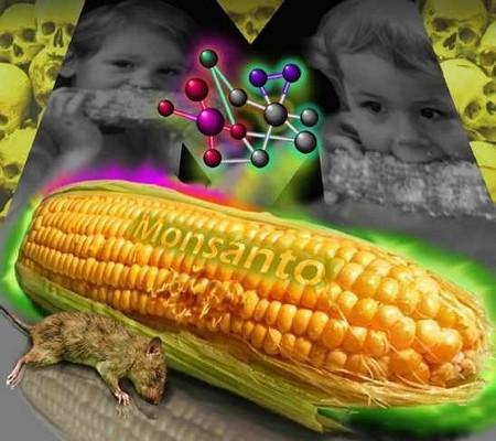 Koliko zapravo znate o tome kako Monsantovi prehrambeni proizvodi utječu na naše zdravlje? Jeste li svjesni kako ova GM kompanija stvara i otrove koji mijenjaju ljudsku DNK?