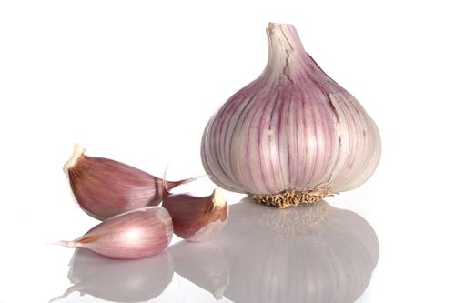 Češnjak, jedan od najpoznatijih prirodnih antibiotika.