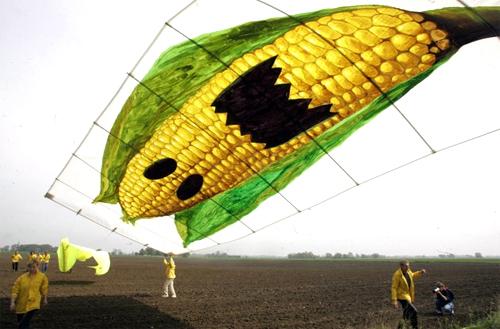 Toksične čestice herbicida iz GM usjeva, koje su navodno biorazgradive, su pronađene u uzorcima kiše, zraka i vode. To znači da bilo gdje da se u svijetu koristi otrovni herbicid, i vi ćete ga udisati, jesti ili piti.