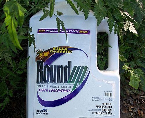 Jedan od najtoksičnijih preparata na tržištu je Mondantov Roundup.