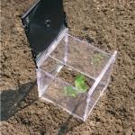 Za praktičan mali plastenik za uzgoj nježnih mladica može se upotrijebiti par straih kutija za cd.
