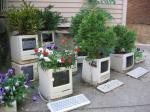 Stari monitori kao ukrasne tegle.
