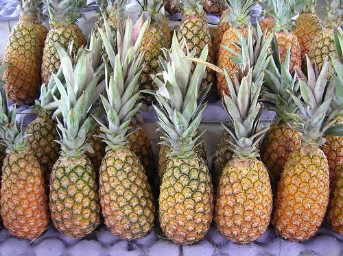 Linkovi i Video Klopovi o lecenju i zdravom nacinu zivota! 1453865_com_pineapple