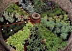 Ukrasno ili začinsko bilje možete posaditi u starom drvenom kotaču