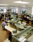 Ured će izgledati ljepše ako se odjeli razdvoje akvarijima