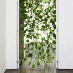 """""""Živa"""" zavjesa za vrata od biljke puzavice"""