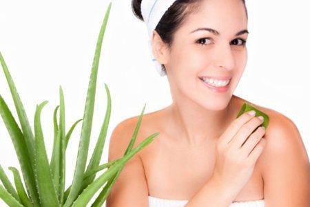 Iako se Aloe vera najviše koristi u kozmetici, njena svojstva su nevjerojatna kako u nutricionizmu tako u medicini i farmaciji.