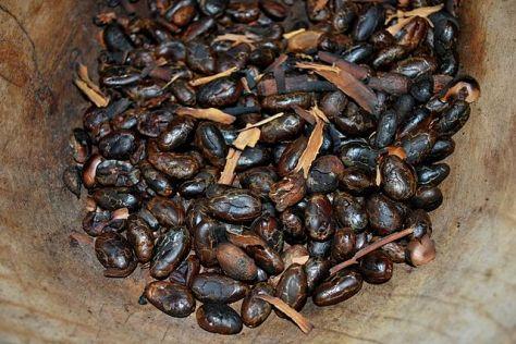 Osnovni sastojci za pripravljanje majanskog čokoladnog napitka.