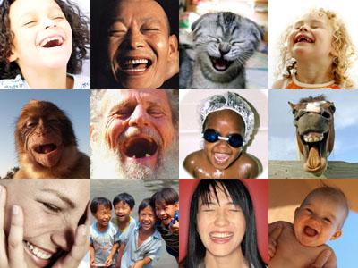 Smijeh nije ekskluzivna ljudska reakcija.