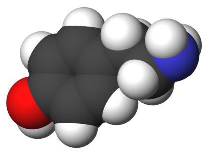 Molekula tiramina.