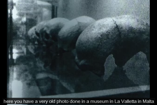 A rare photo of Dolcephalus skulls from Malta.