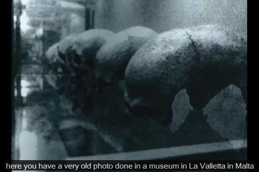 Rijetka fotografija dolicefaličnih lubanja iz Malte.