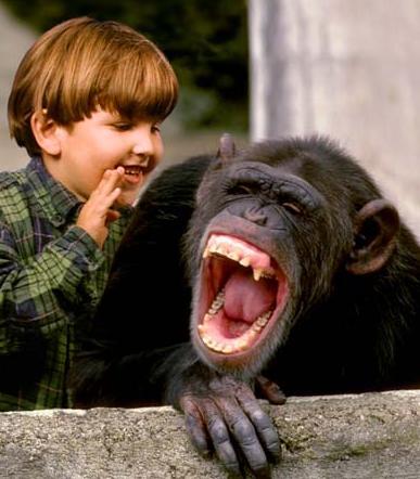 Ponekad je smijeh moguć i među različitim vrstama.