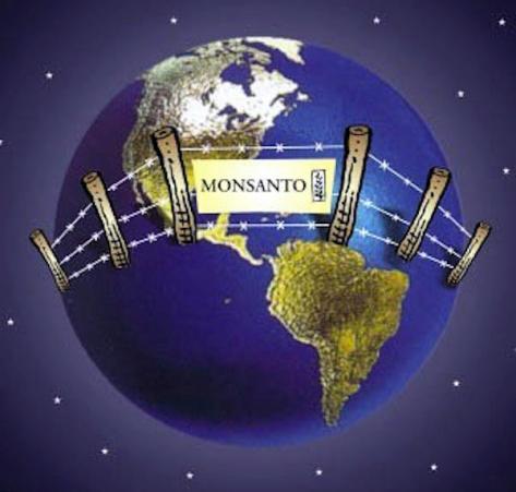Monsanto sve više uspijeva ograničiti korištenje hrane nastale iz prirodnog sjemenja.