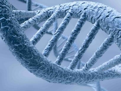 Tipičan i očigledno pogrešan prikaz naše DNK.