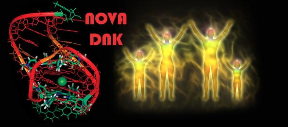 1 nova DNK