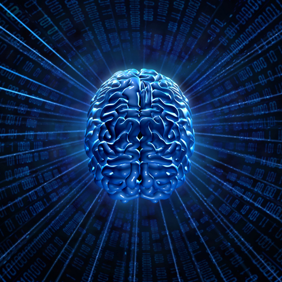 brain_network