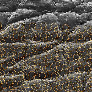 detalji najfinijih EES uređaja, u pozadini vidite uvećanu teksturu ljudske kože.