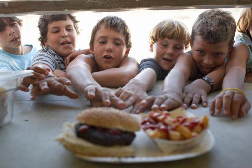 Današnje generacije djece su unaprijed programirane da budu ovisne o hrani-smeću.