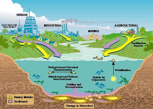 Doslovno smo sa svih strana izloženi trovanju teškim metalima, zagađenje našeg okoliša je ciklično i mi praktički plaćamo najskuplju cijenu današnje moderne civilizacije - plaćamo vlastitim zdravljem.