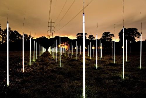 """Utjecaj električnih dalekovoda na fluorescentne lampe bi trebao """"upaliti lampice"""" i u našim glavama."""