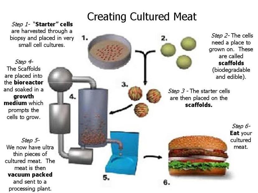 Ovako bi trebala izgledati industrijska proizvodnja in virto mesa.