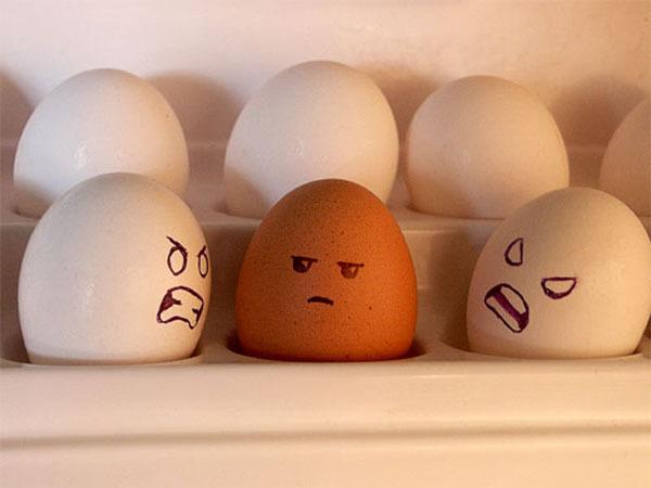 ob_3a8276911ed48d7720bbf8876d331c24_eggs