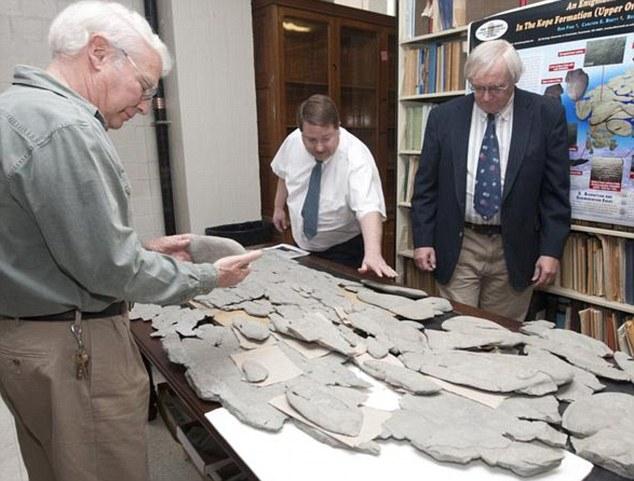 Neobični fosil zbunjuje naučnike.