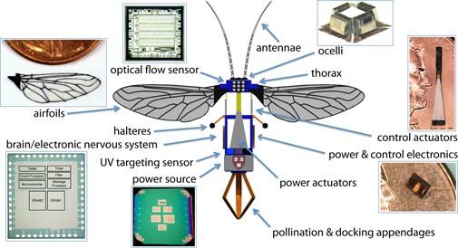 """""""Robobees"""" - robotske pčele koje bi trebale nadmašiti žive pčele u oprašivanju."""