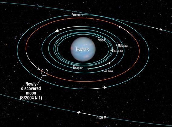 Orbita novog Neptunovog mjeseca.