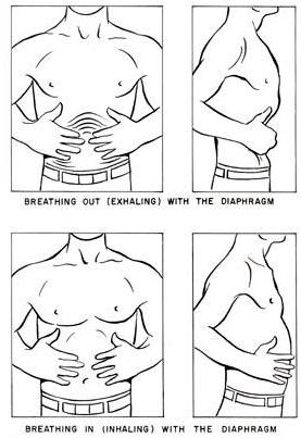 Pravilno disanje dijafragmom (ošitom), gornja slika pokazuje udisaj, donja slika prikazuje izdisaj.