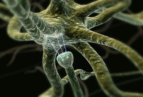 Memorija čipa funkcionira kao što bi to radile sinapse u mozgu, procesori kao neuroni a komunikacija kao živčana vlakna. Ovi čipovi pokušavaju ponoviti i poboljšati sposobnost mozga da odgovori na biološke senzore i analizira velike količine podataka iz mnogih izvora odjednom.
