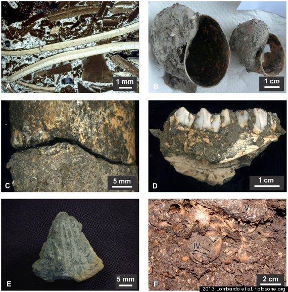 Ostaci kulture starije od deset milenija, neobično otkriće Amazonije.