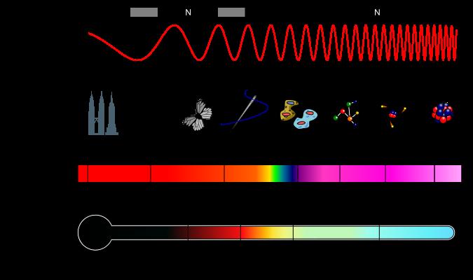 Elektromagnetski spektar, obratite pažnju na uski dio između ultra ljubičaste i infra crvene svjetlosti, to je dio koji mi možemo vidjeti ili osjetiti, dijelom, kao toplinu, mi smo gotovo u potpunosti slijepi.