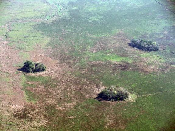 Šumski i prašumski otoci Bolivije lokacija najstarije civilizacije Južne Amerike.