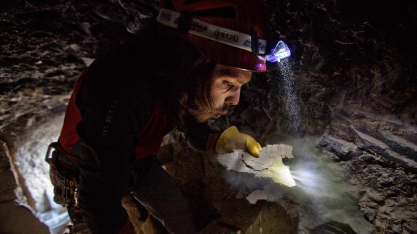 Arheolog odpuhuje prašinu s komada rukopisa, jednog od 8000 dokumenata pronađenih u špiljama Mustanga.  Slika je vlasništvo Cory Richardsa, a ostale slike možete pogledati u galeriji slika.