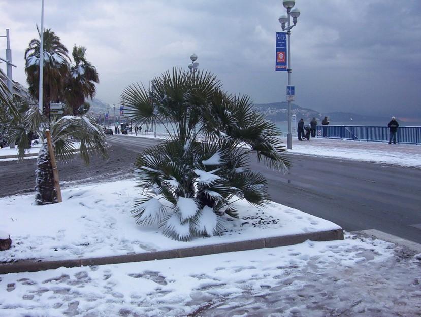 Nice je grad u južnoj Francuskoj na Mediteranskoj obali, pa ipak u zadnjih nekoliko godina često bude prekrivena snijegom po zimi.