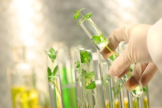 Bioidentična hormonalna nadomjesna terapija je prirodna alternativa sintetički izvedenim hormonalnim lijekovima.