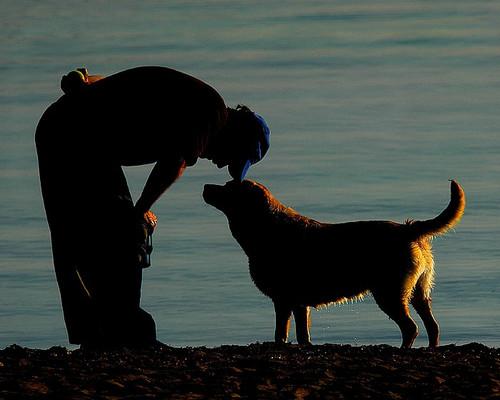 Mnogi se suočavaju s gubitkom najboljeg četveronožnog prijatelja, a neki svoju tugu pokušavaju umanjiti naručivanjem replike svog psa.