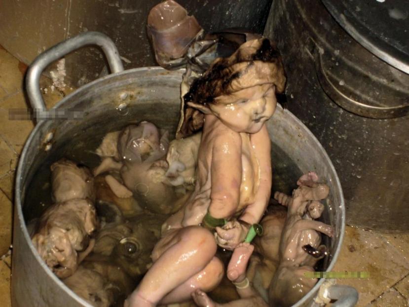 Još jedna fotografija koja je dobrinjela stvaranju fame o tome kako su kinezi postali kanibali.