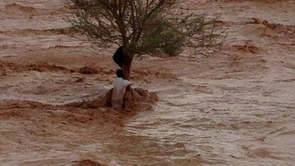 Kiše su u nekoliko sati stvorile bujice na koje nisu naviknuti stanovnici pustinjske države.