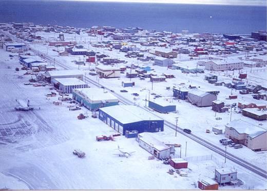 Barrow na Aljasci je toliko hladno mjesto da je prosječna temperatura u srpnju oko 4 stupnja. Žitelji Barrowa žive u stalnoj opasnosti od polarnih medvjeda.