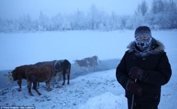 Mještani se uglavnom bave uzgojem stoke, koju tijekom zime napajaju na termalnim izvorima.