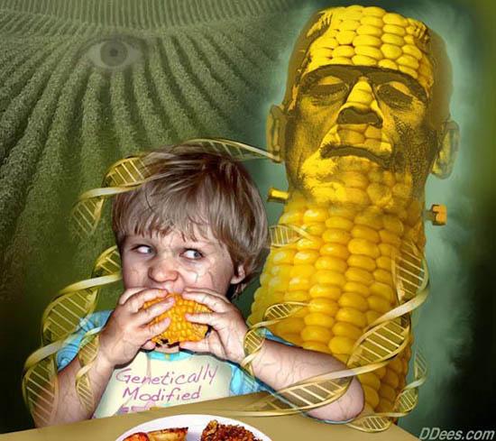 Biotehnološka znanost se temelji na lošoj znanosti, plaćeni znanstvenici uopće nisu ni uzeli u obzir mogući prijenos gena iz GM usjeva na ljude. Slika je vlasništvo DeesIllustration.com